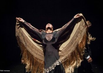 Antonio Andrade Flamenco Show klein